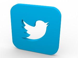 3D twitter logo
